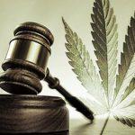 Et si le cannabis était légalisé en France…