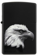 Zippo Eagle Black Matte